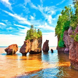 Article-3-The Hopewell Rocks-3